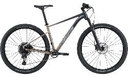 Cannondale Trail SL 1 2021